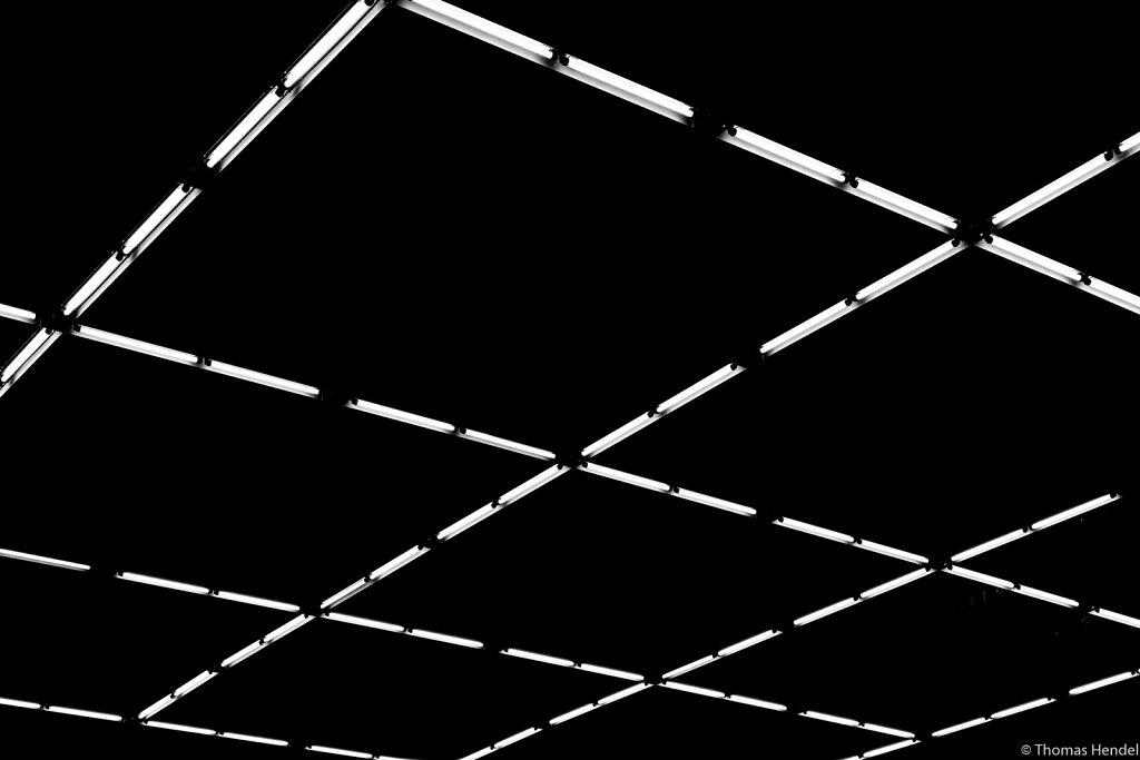 Grid Lines.