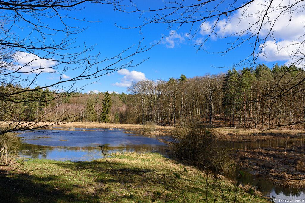 Hidden Pond.