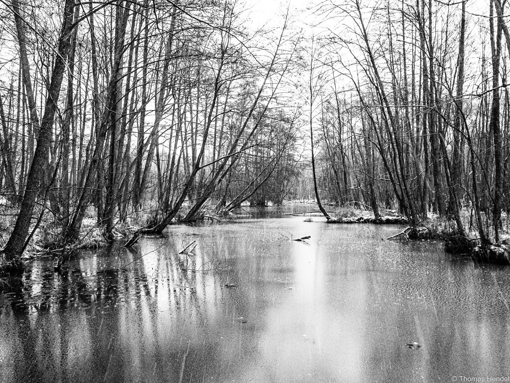 River Briese in Hibernation.